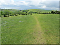 TQ2611 : South Downs Way on Summer Down by Chris Heaton
