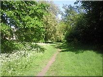 TQ2374 : Path along the northern edge of Putney Heath by Marathon