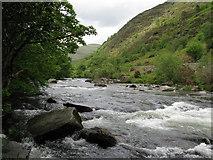 SH5946 : Afon Glaslyn near Nantnor by Dave Spicer