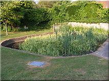 TM2863 : Pond at Framlingham Castle by Adrian Cable