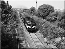 O2458 : Train passing site of Skerries Golf Club halt by The Carlisle Kid