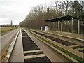 TL4554 : Trumpington halt by Sandy B