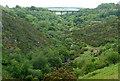 SX5691 : West Okement River valley below Meldon Reservoir by Graham Horn
