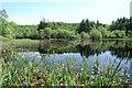 NR8786 : Kilmory Loch by Patrick Mackie