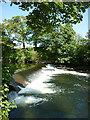 SD6290 : Weir on the River Lune at Kingfisher Mill, Killington by Karl and Ali