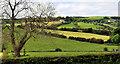 J3048 : Patchwork fields near Dromara by Albert Bridge