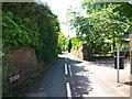 SJ4156 : Hob Lane, Churton by Jeff Buck