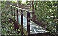 TL7806 : Footbridge into Birch Wood by Roger Jones