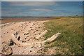 NT4479 : Driftwood at Gosford Bay by Walter Baxter