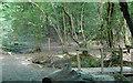 TL7906 : 2 Bridges by Roger Jones