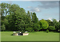 SJ9420 : Landscaped grounds at Stafford Boat Club by Roger  Kidd