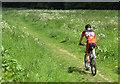 SE6785 : An orienteer heading for Kirkdale Woods by Pauline E