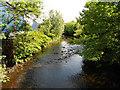 SJ9598 : River Tame, Stalybridge by David Dixon