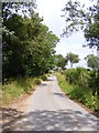 TM2665 : Saxtead Bottoms looking towards the A1120 Button's Hill by Adrian Cable