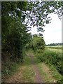 TM2365 : Bullswood Lane Byway to Bedfield Hall by Adrian Cable