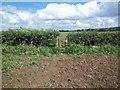 SP0939 : Towards Willersey by Michael Dibb