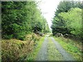 NX4067 : Track to the car park at Knockman Wood by Ann Cook