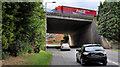 J2459 : Flyover, Hillsborough (2) by Albert Bridge