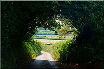 SZ5885 : Upper Adgestone Road, Alverstone, Isle of Wight by Peter Trimming