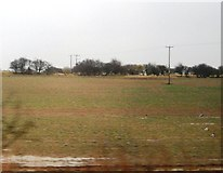 NU2314 : Field by the ECML south of Longhoughton by N Chadwick