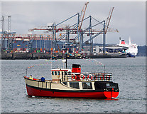 J3576 : The 'Mona' at Belfast by Rossographer