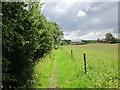 SJ5460 : The Sandstone Trail  near Hand Green by Jeff Buck