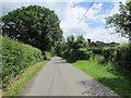 SJ5460 : Pudding Lane near Hand Green by Jeff Buck