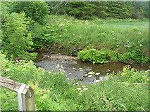 SE7485 : River Seven near Sinnington by JThomas