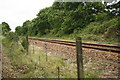 TG3019 : Bure Valley Railway and the Bittern Line by Glen Denny
