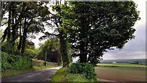 J4772 : The Killynether Road, Newtownards (2) by Albert Bridge