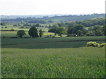 SP6157 : Northamptonshire Countryside by Michael Trolove