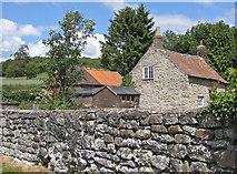 SE7485 : Old stone wall, Sinnington by Pauline E