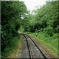 SJ9949 : Churnet Valley Railway north of Consall, Staffordshire by Roger  Kidd