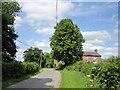SJ5070 : Smithy Lane towards Mouldsworth by Jeff Buck