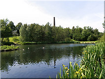 SJ9599 : Stamford Park Upper Lake by David Dixon
