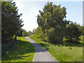SJ9599 : Stamford Park, Path to Mellor Road by David Dixon