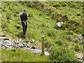 B9319 : Spraying weeds, Dunlewey by Kenneth  Allen