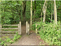 SD9701 : Tame Valley, Scout Green by David Dixon