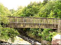 SD9701 : Wooden Footbridge Over the River Tame by David Dixon
