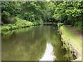 SD9701 : Huddersfield Narrow Canal by David Dixon