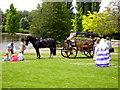 SJ9042 : Horse-drawn carriage, Longton Park, nr Dresden by Carl Farnell