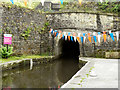 SE0311 : Standedge Tunnel, Marsden Portal by David Dixon