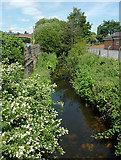 SO8690 : The Smestow Brook at Swindon, Staffordshire by Roger  Kidd