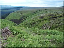 SK1491 : The Upper Reaches of Ouzelden Clough by Jonathan Clitheroe
