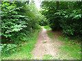 SU8142 : Walking the blue trail by Sandy B