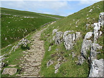 SD8964 : Pennine Way above Watlowes Valley by Chris Heaton