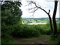 SO8282 : View From Kinver Edge by Geoff Pick