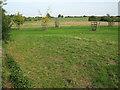 SP6836 : Farmland at New Inn  Farm by Trevor Rickard