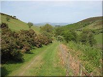 SN8195 : Glyndwr's Way descends to Nantyfyda by David Purchase