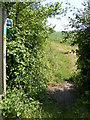 TM2964 : Footpath to the B1120 Badingham Road by Adrian Cable